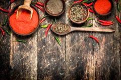Предпосылка перца Разные виды перца chili Стоковое Изображение