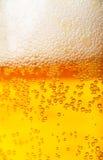 Предпосылка пива Стоковое Изображение RF