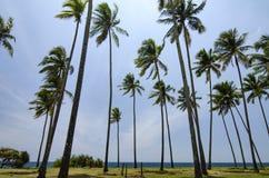 Предпосылка пляжа и голубого неба под ярким солнечным днем Стоковые Фото