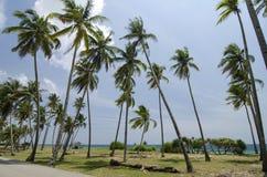 Предпосылка пляжа и голубого неба под ярким солнечным днем Стоковая Фотография