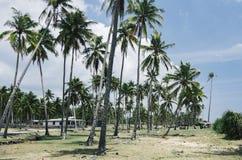 Предпосылка пляжа и голубого неба под ярким солнечным днем Стоковое Изображение