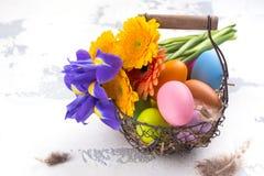 предпосылка покрасила вектор тюльпана формы пасхальныхя eps8 красный против детенышей весны цветка принципиальной схемы предпосыл Стоковое Изображение RF