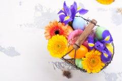 предпосылка покрасила вектор тюльпана формы пасхальныхя eps8 красный против детенышей весны цветка принципиальной схемы предпосыл Стоковое Фото