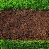Предпосылка почвы и травы Стоковая Фотография
