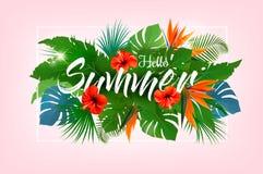 Предпосылка праздника лета тропическая с экзотической ладонью Стоковое Изображение RF