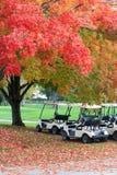 Предпосылка природы в цветах осени Стоковая Фотография RF