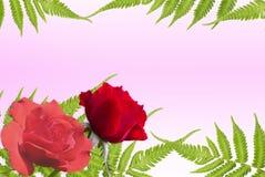 Предпосылка природы для валентинки Стоковые Фотографии RF