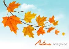 Предпосылка природы осени с красочными листьями бесплатная иллюстрация