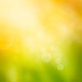 Предпосылка природы осени Bokeh Стоковое Изображение RF