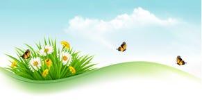 Предпосылка природы с травой и цветками и бабочками Стоковые Изображения