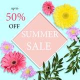 Предпосылка продажи лета - флористический дизайн знамени, рогульки или столба Стоковые Фотографии RF