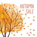 Предпосылка продажи осени с желтым деревом Стоковые Изображения RF
