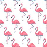 Предпосылка птицы фламинго - ретро безшовная картина в векторе стоковое фото rf