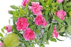 Предпосылка пука цветков Стоковое фото RF