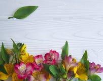 Предпосылка расположения украшения цветка Alstroemeria белая деревянная, рамка Стоковые Фотографии RF