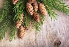 Предпосылка рождества деревянная с ветвями и конусами ели стоковое изображение rf