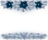Предпосылка рождества с ветвями, голубиками и цветками ели Стоковая Фотография