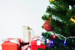 Предпосылка рождества с подарочной коробкой сосны белой и красной Стоковые Изображения