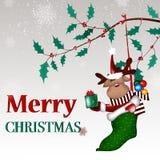 Предпосылка рождества с шаржем оленей рождества Стоковые Фото