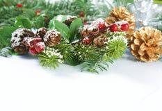 Предпосылка рождества с ягодами и конусами сосны Стоковая Фотография RF