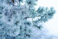 Предпосылка рождества яркая с декоративной снежинкой Стоковое фото RF