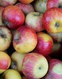 предпосылка рынка плодоовощей красного зрелого ath яблок местного Стоковые Изображения