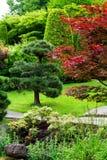 Предпосылка сада Стоковая Фотография