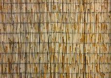 Предпосылка сена или сухой травы Покрывать крышу для предпосылки, высушенной соломы или тросточки стоковая фотография rf