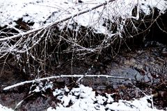 Предпосылка снежного пола леса с идущим рекой стоковые изображения