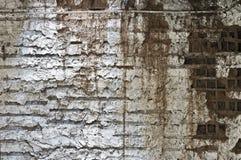 Предпосылка стены Стоковые Фото