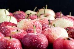 Предпосылка с концом предпосылки сбора яблок малой предпосылки яблок деревянной красивым малым вверх Стоковая Фотография RF