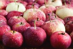 Предпосылка с концом предпосылки сбора яблок малой предпосылки яблок деревянной красивым малым вверх Стоковые Фото