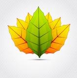 Предпосылка с листьями Стоковая Фотография