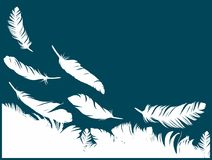 Предпосылка с пер птицы Стоковое Изображение