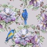 Предпосылка с розами и голубыми птицами картина безшовная Стоковая Фотография RF