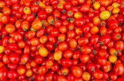 Предпосылка с свежими красными томатами в рынке Стоковые Изображения