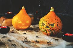 Предпосылка с сетью ` s паука, тыквы ужаса хеллоуина, candl Стоковая Фотография
