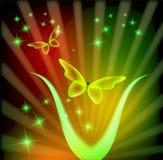 Предпосылка с сияющими butteflies и звездами Шаблон для вводить текст Стоковое Изображение RF