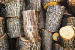Предпосылка с треснутой древесиной Стоковое Изображение RF