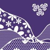 Предпосылка с цветом шнурка, фиолетовых и белых иллюстрация вектора