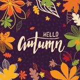 Предпосылка с multicolor листьями осени также вектор иллюстрации притяжки corel Стоковое фото RF