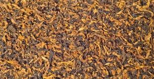 Предпосылка табака Стоковая Фотография