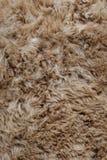 Предпосылка текстуры меха овчины Брауна стоковая фотография