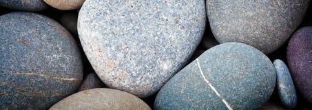 Предпосылка текстуры моря камешков конспекта знамени сети ровная круглая Стоковое Фото