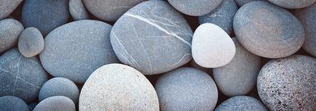 Предпосылка текстуры моря камешков конспекта знамени сети ровная круглая Стоковое Изображение RF
