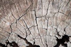 Предпосылка текстуры цвета природы деревянная старая текстура деревянная Стоковое фото RF