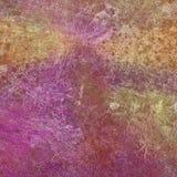 Предпосылка текстуры magenta и желтой стены детальная Стоковые Изображения RF