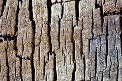 предпосылка трескает древесину текстуры Стоковое фото RF