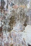 Предпосылка треснутая и шелушение краски старая стены Классический grunge Стоковые Изображения