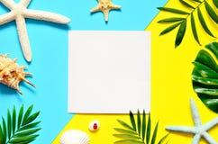 предпосылка тропическая Ветви пальм с морскими звёздами и seashell на желтой и голубой предпосылке Путешествия скопируйте космос Стоковое Изображение RF